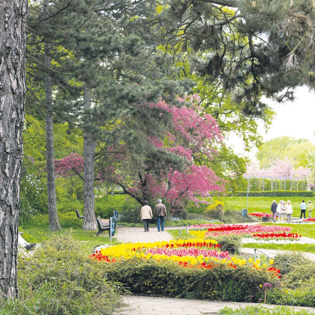 Der Pestalozzipark im Süden der Stadt Halle